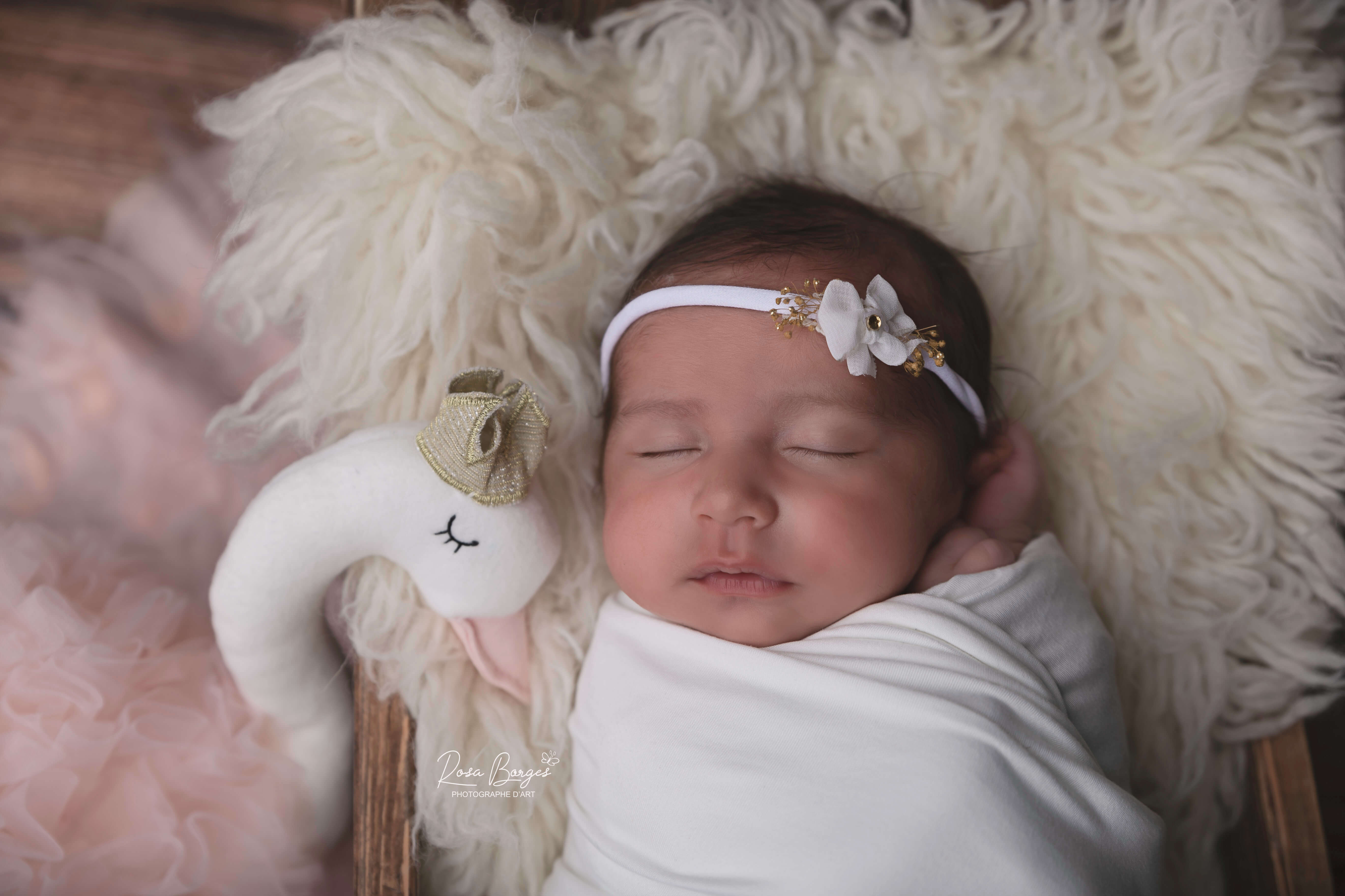 photo nouveau né - baby newborn - photo nouveau né Troyes 15