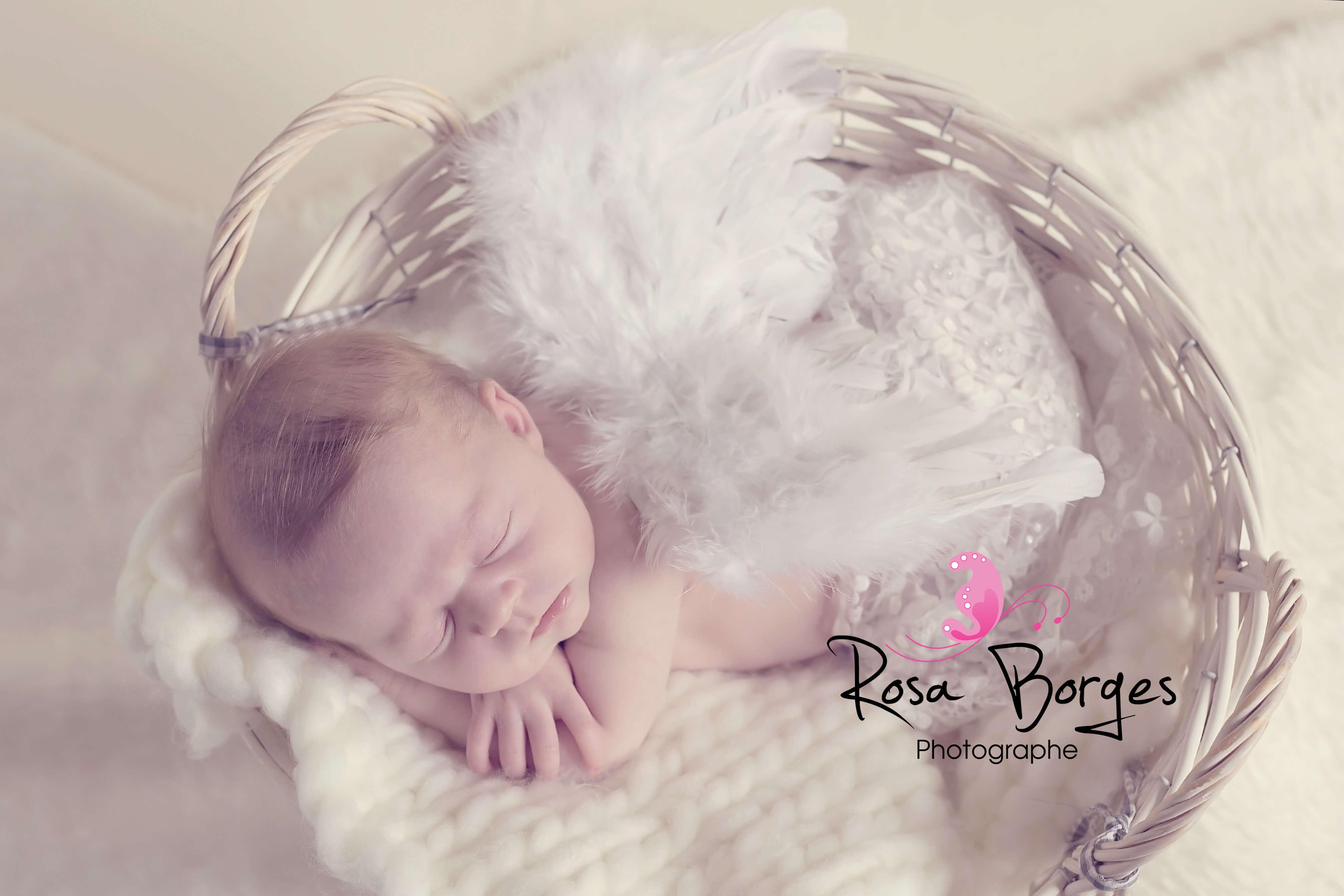 photographie nouveau-né avec ses ailes d'anges, dans un panier